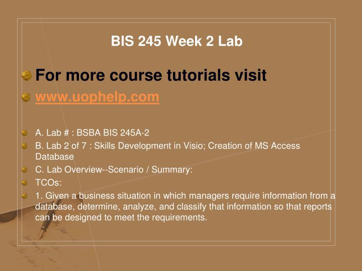 BIS 245 Week 2 Lab