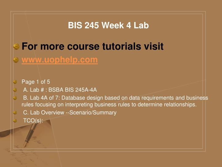 BIS 245 Week 4 Lab
