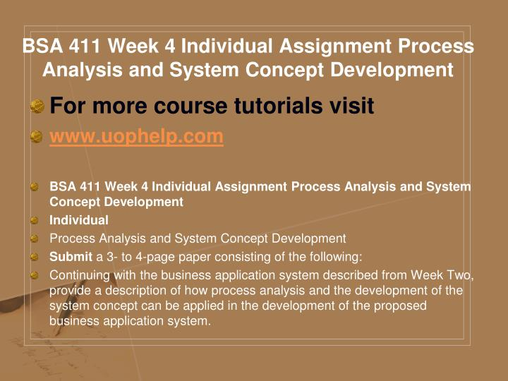 BSA 411 Week 4 Individual Assignment Process Analysis and System Concept Development