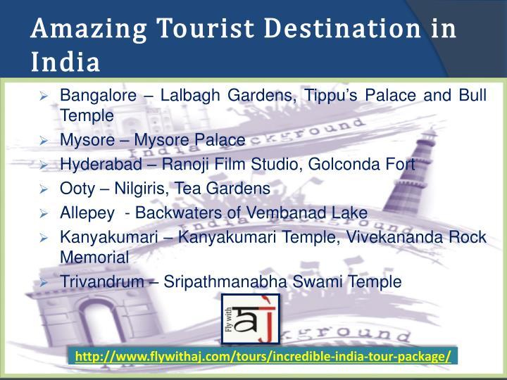 Amazing Tourist Destination in India