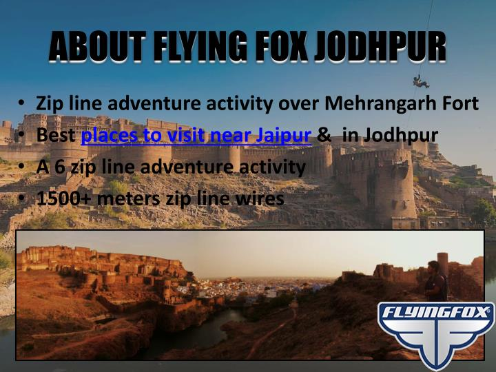 ABOUT FLYING FOX JODHPUR