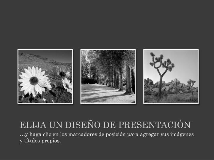 Elija un diseño de presentación