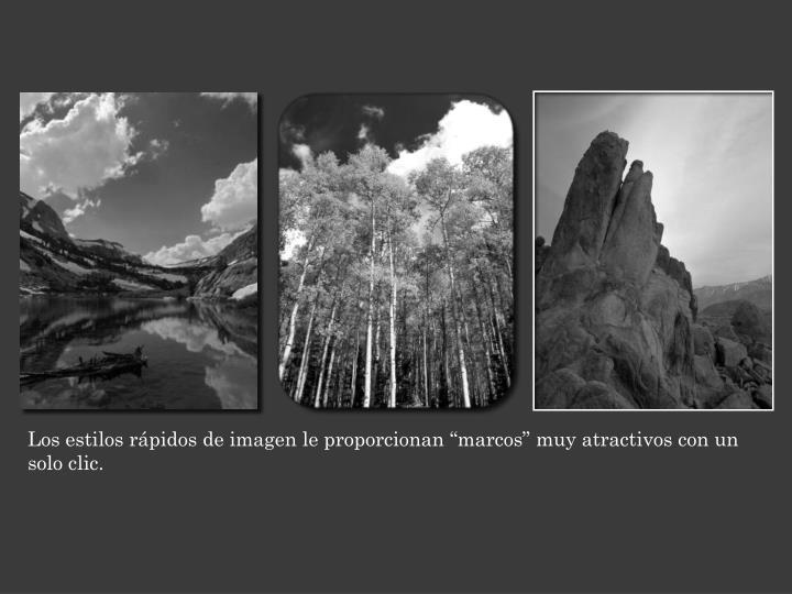 """Los estilos rápidos de imagen le proporcionan """"marcos"""" muy atractivos con un solo clic."""