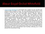 about goyal orchid whitefield