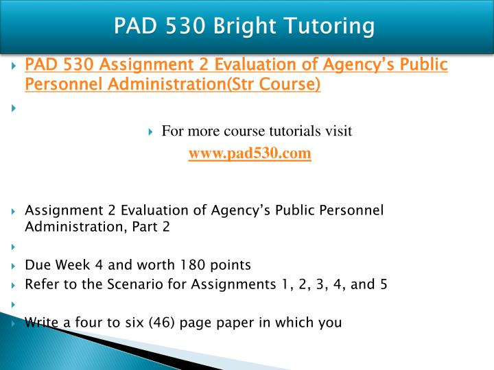 PAD 530 Bright Tutoring