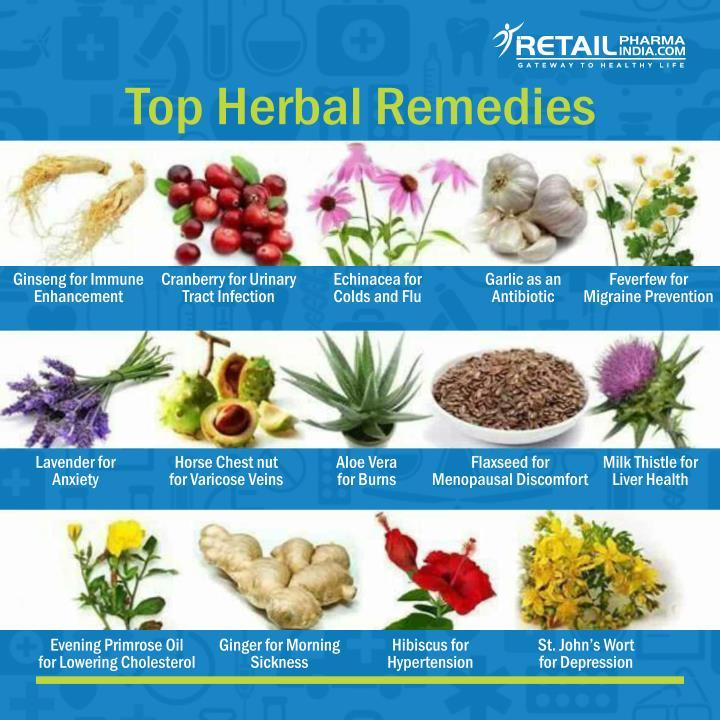 Top Herbal Remedies