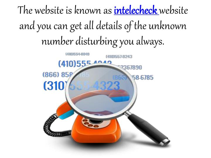 The website is known as intelecheck