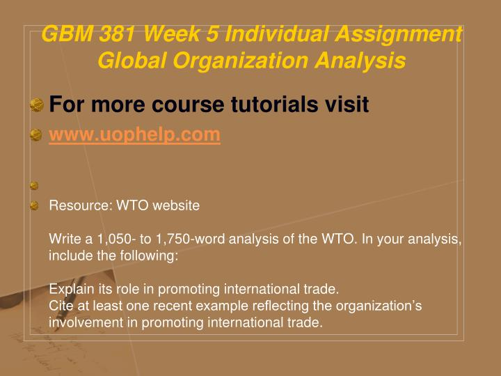 GBM 381 Week 5 Individual Assignment Global Organization Analysis