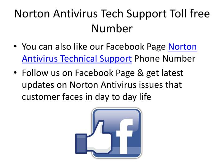 Norton Antivirus Tech Support Toll free Number