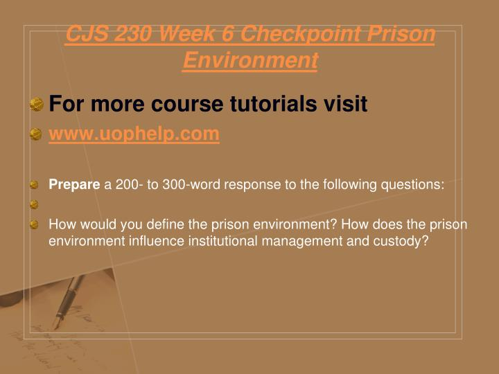 CJS 230 Week 6 Checkpoint Prison Environment