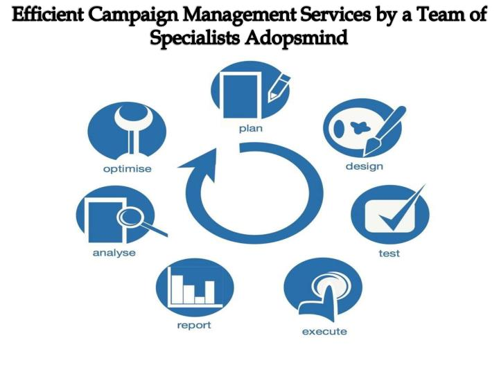 Efficient Campaign Management Services by a Team of Specialists Adopsmind