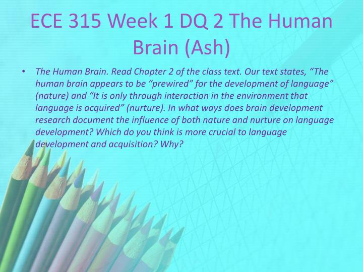 ECE 315 Week 1 DQ 2 The Human Brain (Ash)