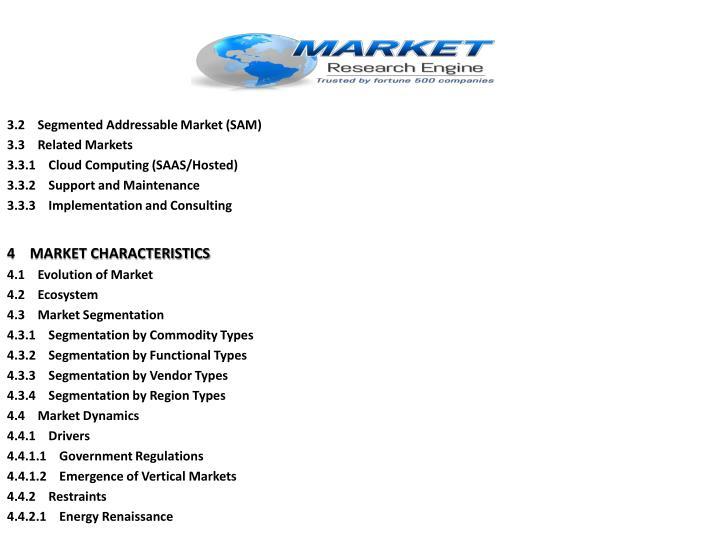 3.2    Segmented Addressable Market (SAM)