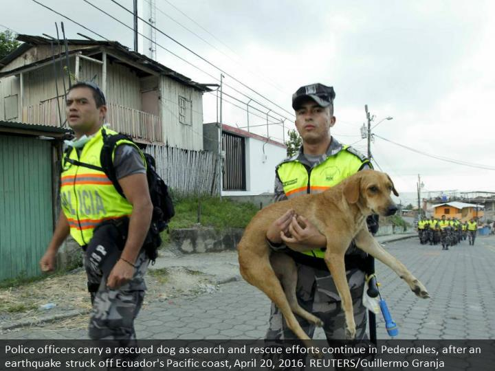 Police officers carry a rescued dog as search and rescue efforts continue in Pedernales, after an earthquake struck off Ecuador's Pacific coast, April 20, 2016. REUTERS/Guillermo Granja