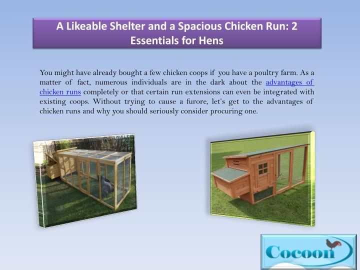 A Likeable Shelter and a Spacious Chicken Run: 2