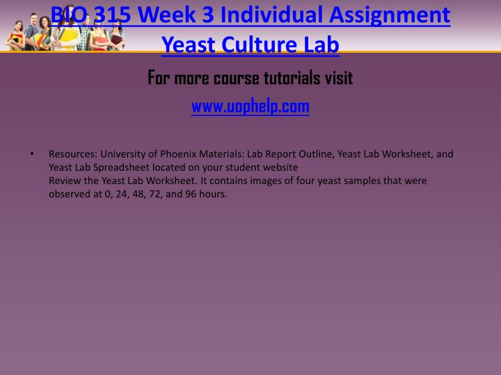 BIO 315 Week 3 Individual Assignment Yeast Culture