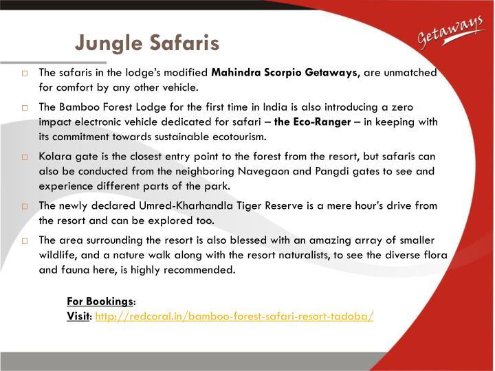 Jungle Safaris