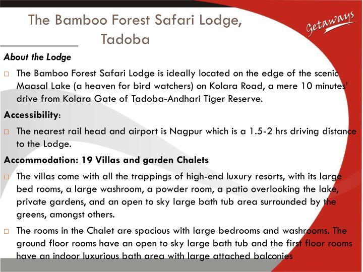 The Bamboo Forest Safari Lodge,