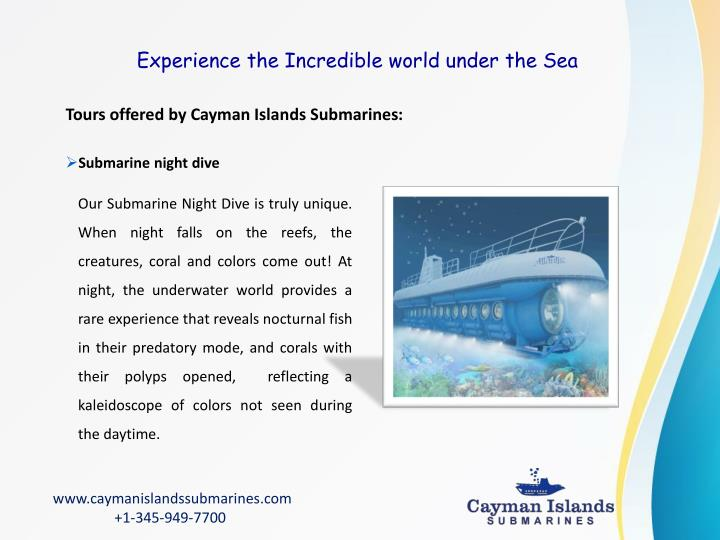 Experience the Incredible world under the Sea
