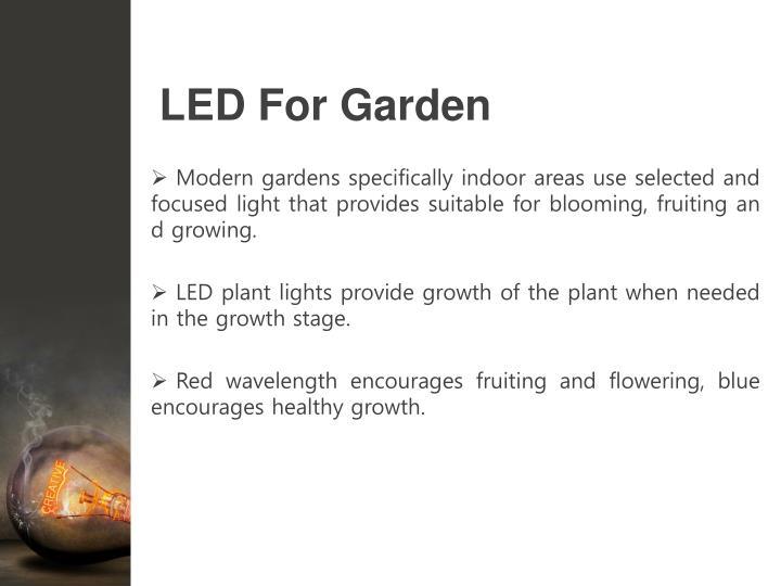LED For Garden