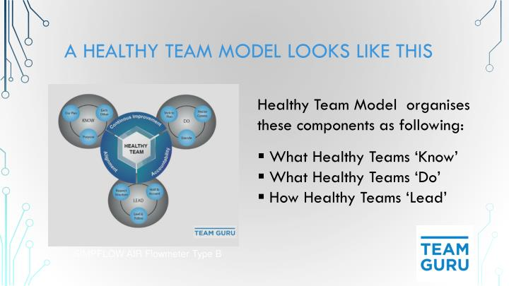 A Healthy Team Model Looks Like this