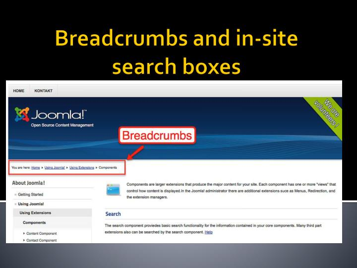 Breadcrumbs and in-site search boxes