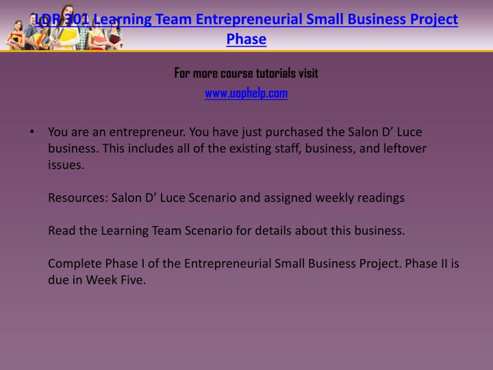 LDR 301 Learning Team Entrepreneurial Small Business Project