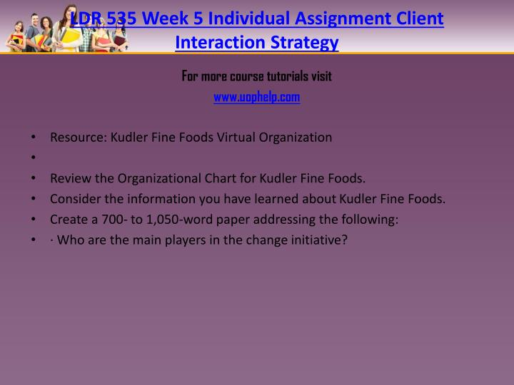 LDR 535 Week 5 Individual Assignment Client Interaction