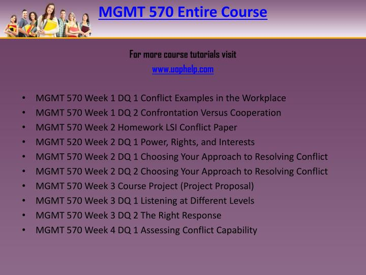 Mgmt 570 entire course