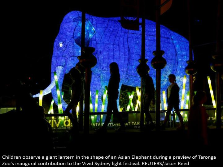 Children watch a goliath lamp fit as a fiddle of an Asian Elephant amid a review of Taronga Zoo's inaugural commitment to the Vivid Sydney light celebration. REUTERS/Jason Reed