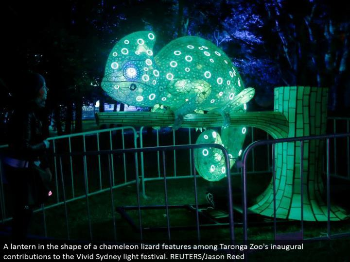 A lamp fit as a fiddle of a chameleon reptile highlights among Taronga Zoo's inaugural commitments to the Vivid Sydney light celebration. REUTERS/Jason Reed