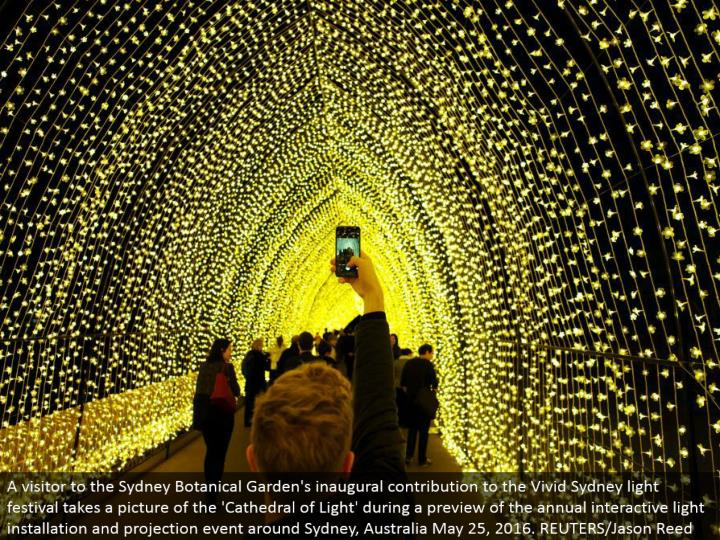 A guest to the Sydney Botanical Garden's inaugural commitment to the Vivid Sydney light celebration takes a photo of the 'Church building of Light' amid a sneak peak of the yearly intelligent light establishment and projection occasion around Sydney, Australia May 25, 2016. REUTERS/Jason Reed