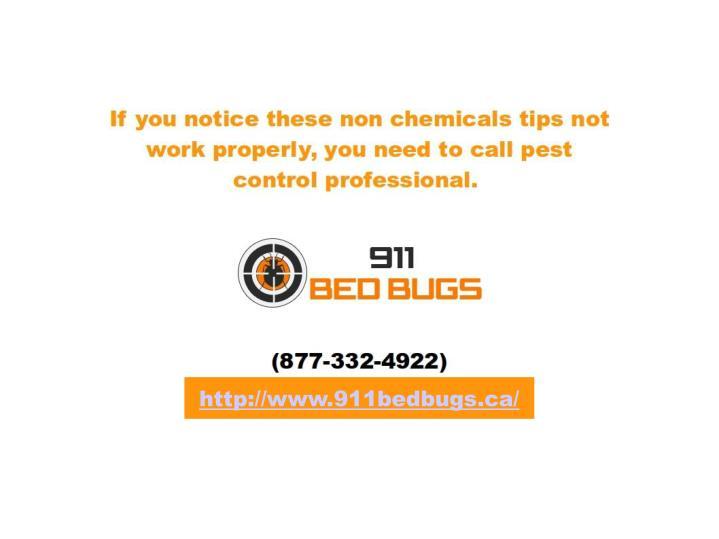 http://www.911bedbugs.ca/