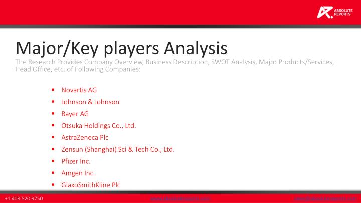 Major/Key players Analysis