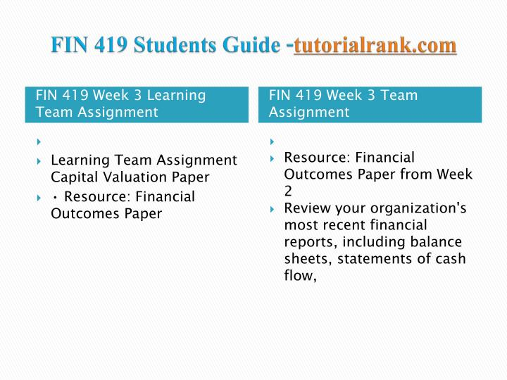 FIN 419 Students Guide -
