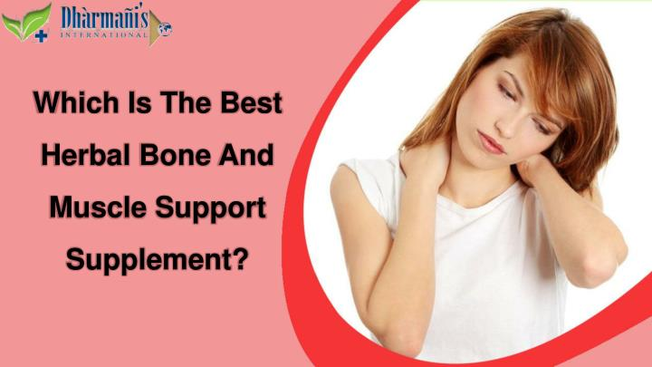 Which Is The Best Herbal Bone And Muscle Support Supplement?