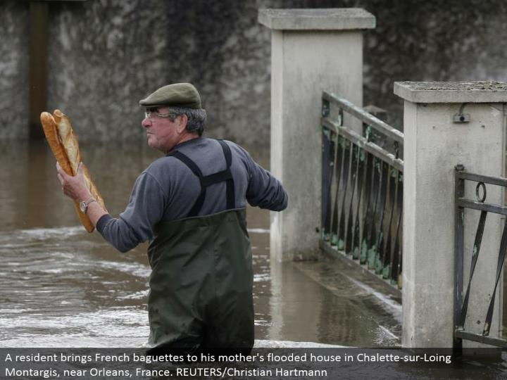 A inhabitant conveys French baguettes to his mom's overflowed house in Chalette-sur-Loing Montargis, close Orleans, France. REUTERS/Christian Hartmann
