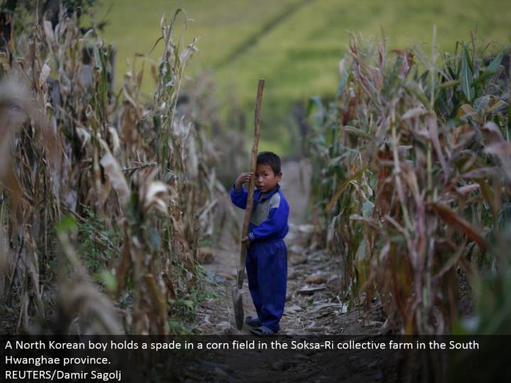 A North Korean kid holds a spade in a corn field in the Soksa-Ri aggregate homestead in the South Hwanghae area.  REUTERS/Damir Sagolj