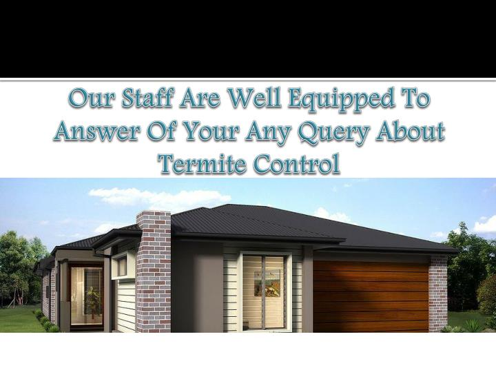 Our staff are well equipped to answer of your any query about termite control