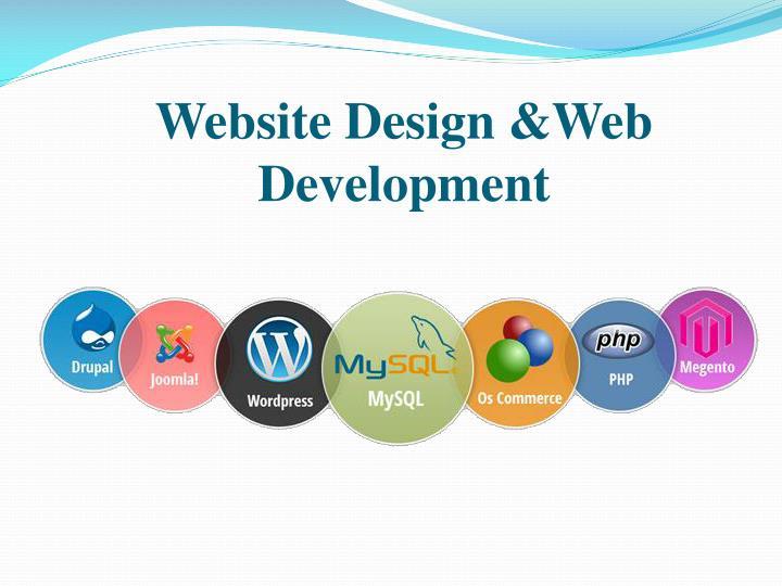 Website Design &Web Development