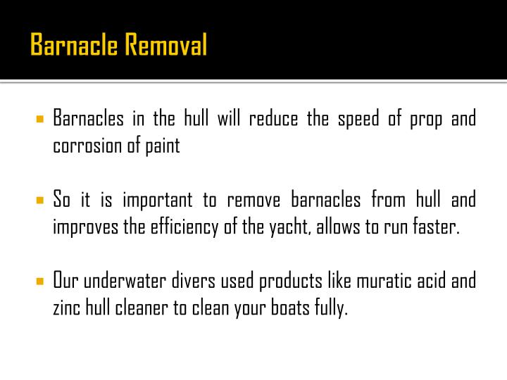 Barnacle Removal