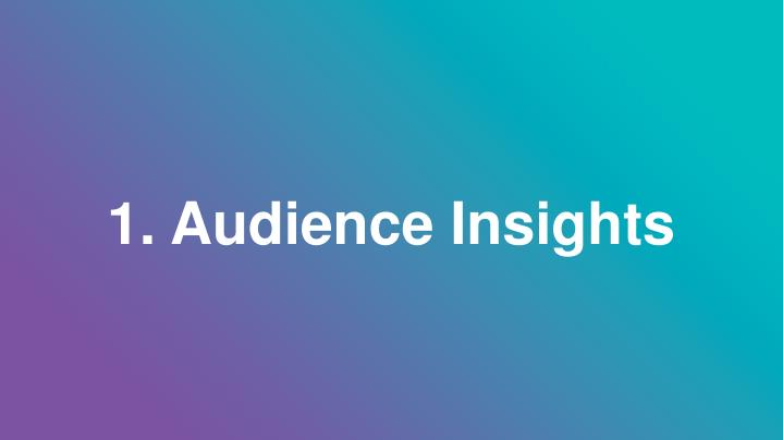 1. Audience Insights
