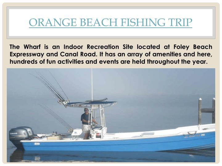 Orange Beach Fishing Trip