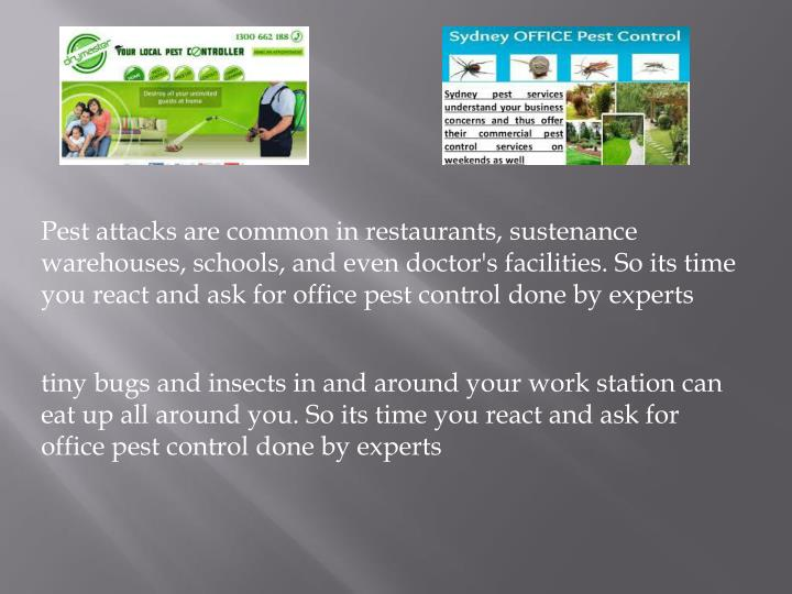 Pest attacks are common in restaurants, sustenance warehouses, schools, and even doctor's facilities. So its time you react and ask for office pest control done by experts