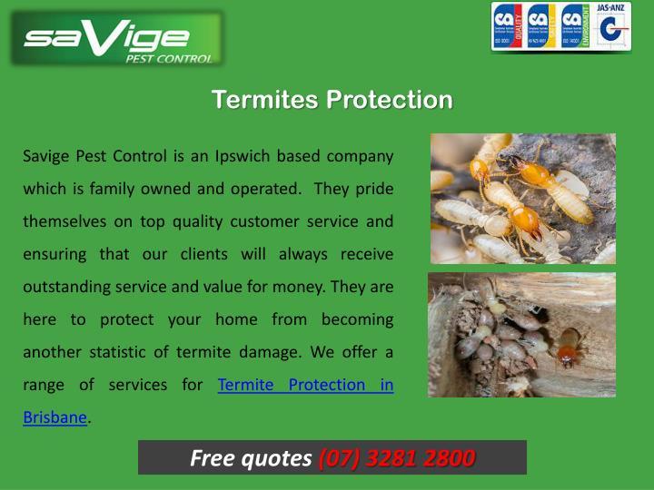 Termites Protection