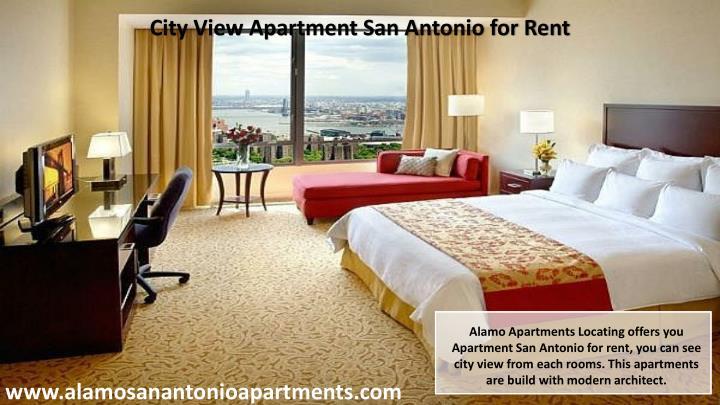 City View Apartment San Antonio for Rent