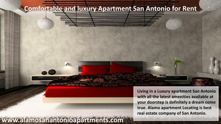Comfortable and luxury Apartment San Antonio for Rent