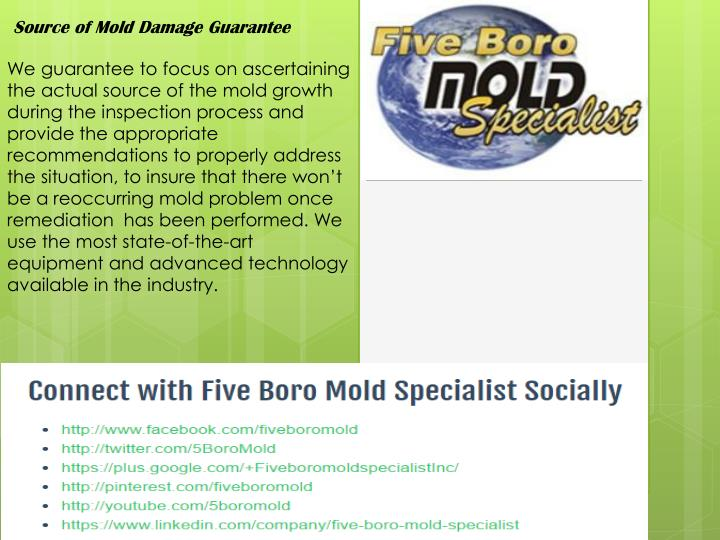 Source of Mold Damage Guarantee