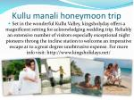 kullu manali honeymoon trip