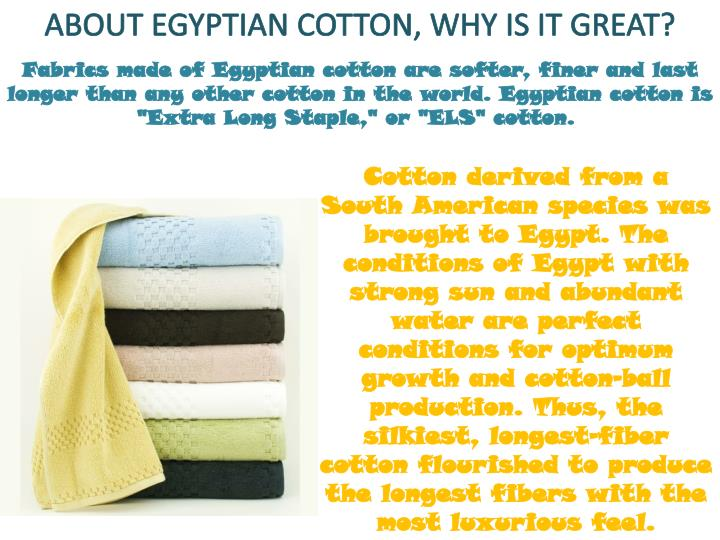 "Fabrics made of Egyptian cotton are softer, finer and last longer than any other cotton in the world. Egyptian cotton is ""Extra Long Staple,"" or ""ELS"" cotton."
